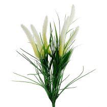 Rævehale græsgrøn, hvid 63 cm