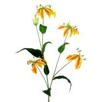 Gloriosa gren orange-gul 90cm 1p