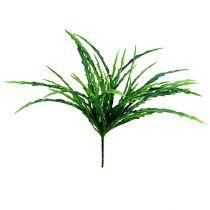 Græsbuskegrøn 48 cm 3stk