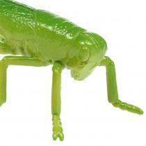 Græshoppegrøn 11cm 1p