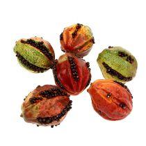 Efterårsfrugter 3,5 cm rød, brun 24stk