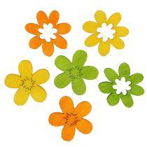 Træ blomster kuld dekoration 2 cm forskellige farver 144St