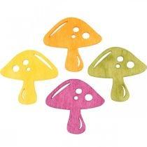 Spredte svampe, efterårsdekorationer, heldige svampe til at dekorere orange, gul, grøn, lyserød H3,5 / 4cm B4 / 3cm 72stk.