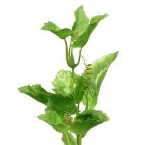Hopgren 70 cm grøn 2stk