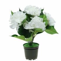 Hortensia i en urtepotte Kunstig hvid 35cm