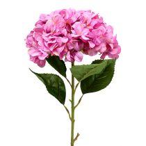 Hortensia Maxi Rosa Ø30cm L113cm