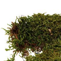 Indisk mosskov Mosgrøn Natur 2 kg