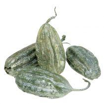 Loofah frugtgrøn 14 cm 10stk
