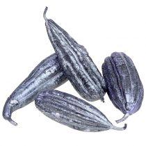 Loofah frugt lilla 14 cm - 20 cm 10stk