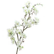 Kirsebærblomstgren hvid 105cm