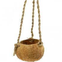 Kokosnødskål til hængning, naturlig planterskål, hængende kurv Ø8cm L55cm