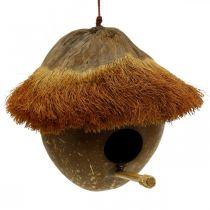 Kokosnød som redekasse, fuglehus at hænge, kokosnøddekoration Ø16cm L46cm