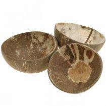 Kokos dekorationsskål naturpoleret 6 stk