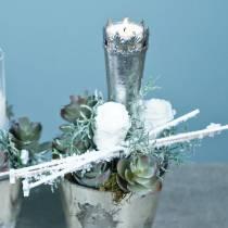 Konserverede roser medium Ø4-4,5cm hvid 8stk