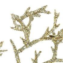 Koralgren med glimmer 3 guld glimmer