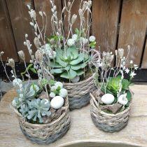 Vævet kurv oval planter naturlig, grå 29 / 24cm, sæt med 2