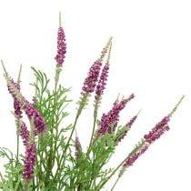 Lavendelbusk lilla 43 cm