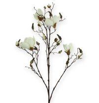 Magnolia gren hvid 110cm