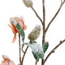 Magnolia gren lyserosa L 82cm