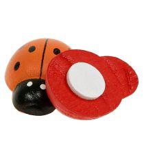 Ladybirds farvet 2,5 cm 60p