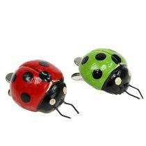 Mørkebøtte med klemme 4,5 cm rød, grøn 6stk