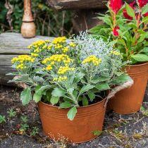 Metalpotte med rebhåndtag, planteskål, efterår, patina Ø22cm H12cm