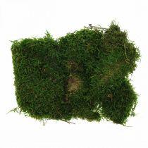 Dekorativ mos til kunsthåndværk grøn, mørkegrøn 100g