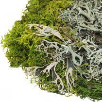 Dekorativ mos til kunsthåndværk Mos og lav blandes grøn, grå 100g