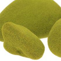 Mossten blander grøn 5,5-13 cm 12stk