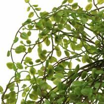 Mühlenbeckia bushgrøn 42cm