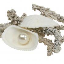 Skalblanding med perle og hvidt træ 200g