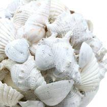 Skalkugle hvid Ø10cm