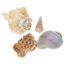 Shell mix naturlige 500g