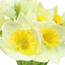 Narcissus creme L42cm 3stk