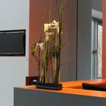 OASIS® Black Table Deco Medi blomster skum 4stk