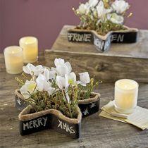 Våd blomsterskumstjerne til arrangementer 25 x 25 x 4,5 cm