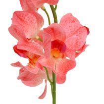 Orchid Mokara laks 50 cm 6stk