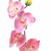 Orchid phalaenopsis kunstig lyserød 60 cm