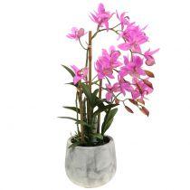 Orkidé i en pot lilla H55cm
