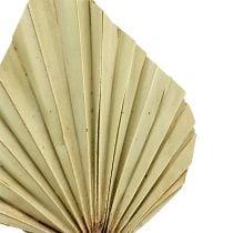 Palmspear mini natur 100stk