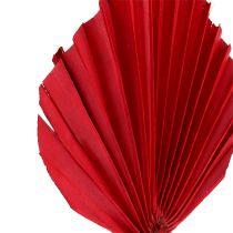 Palmspear mini rød 100p
