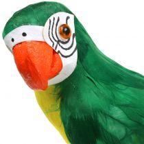 Dekorativ papegøje grøn 44cm
