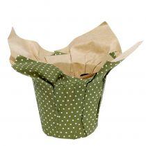 Papirplanter mønstret grøn-hvid Ø11,5cm 8stk