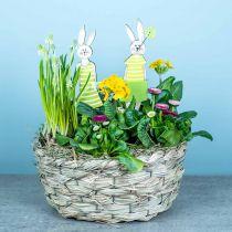 Planter lavet af hø, dekorativ kurv, plantekurv, oval blomsterkurv, sæt med 3