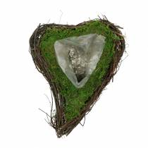 Plant hjertevin, mos 22cm x 28cm H8cm