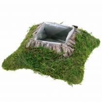 Plantepude mos, bark 25cm × 25cm