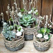 Plantekurv, vævet kurv til plantning, rund blomsterkurv naturlig, grå Ø29 / 23,5 / 18cm, sæt med 3