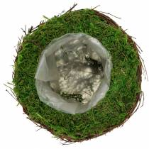 Planteskål rotting, mos Ø16cm H11cm
