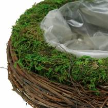 Planteskål rotting, mos Ø26cm H9cm