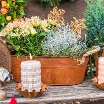 Plantekrukke med håndtag, urteskål, efterårsdekoration, patina L28cm H11cm